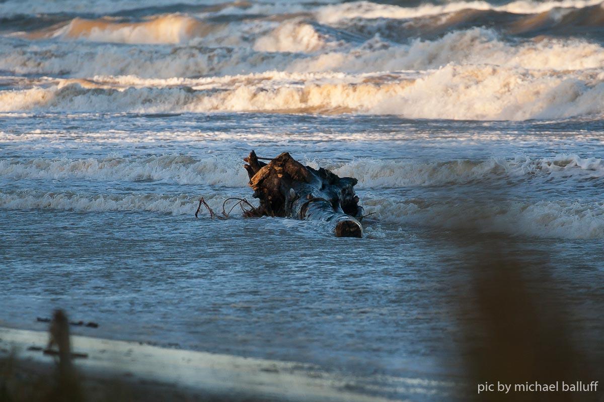 2019.01.02 Surfen Baabe klein (52 von 55)